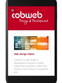 Mobile-Friendly Responsive Cobweb Website